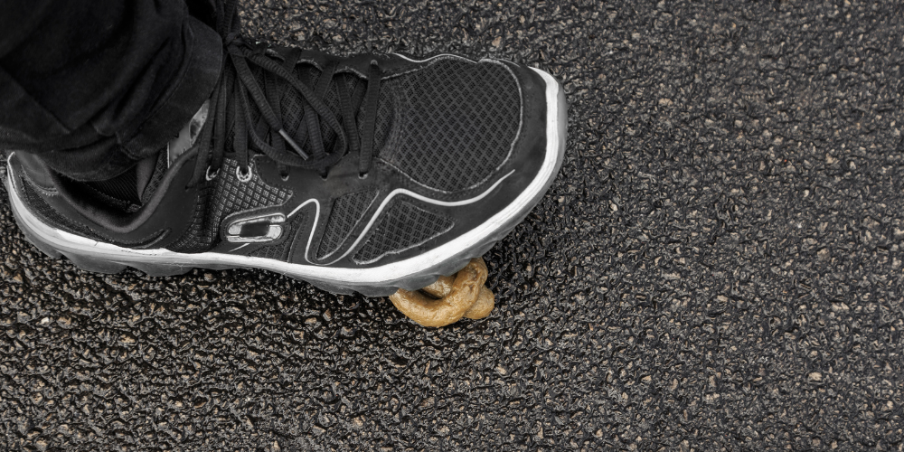 runner stepping in dog poop